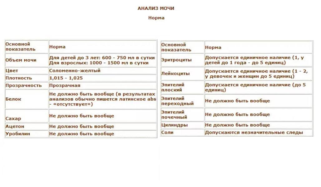 Анализ мочи эпителий плоский 5-6 Справка для домашнего надомного обучения Донской район